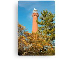 Barnegat Lighthouse, New Jersey Canvas Print