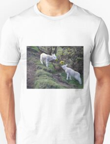 Lambs Puppy Food - Donegal Ireland  T-Shirt