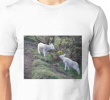 Lambs Puppy Food - Donegal Ireland  Unisex T-Shirt