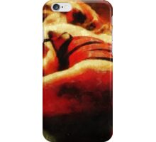 A Friend from Brazil 2 by Mary Bassett iPhone Case/Skin