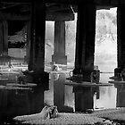 Under bridge by Andrey Kudinov