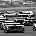GT1's - Silverstone 2010 by MSport-Images