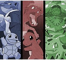 pokemon charmander squirtle bulbasaur blastoise charizard venusaur anime manga shirt Photographic Print