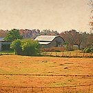 Another Homer Barn by Chelei