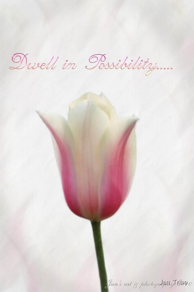 Dwell in Possibility... by Jan  Tribe