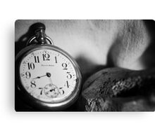 half past life Canvas Print