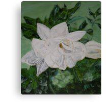 Gardenia Canvas Print