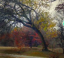 Saturday in November by hickerson