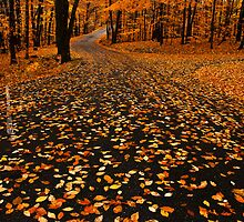 """Fall Afternoon"" by Jaime Hernandez"