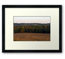 Multi Colored Field Framed Print