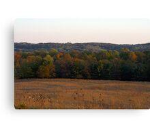 Multi Colored Field Canvas Print