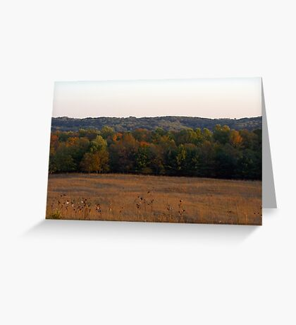 Multi Colored Field Greeting Card