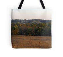 Multi Colored Field Tote Bag