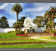 Conservatory OF Flowers, San Francisco by maventalk