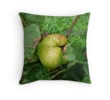 Grenadier Apple Throw Pillow
