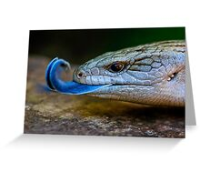 Blue-tongued Lizard  (Tiliqua scincoides scincoides) Greeting Card