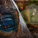 Spirit Equus by GrayHorseDesign