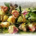 Sleeping roses by Gilberte
