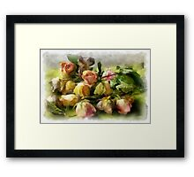 Sleeping roses Framed Print
