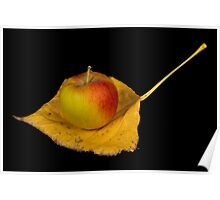 Apple on an Autumn leaf Poster