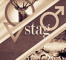Stag Poster by James Dolan