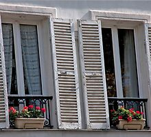 Provencial Weathered Shutters by phil decocco