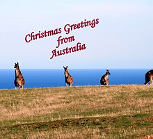 Christmas Greetings from Australia. by elphonline
