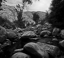 Canyon Stream by Marvin Collins