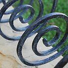 Spirals by Catherine Davis