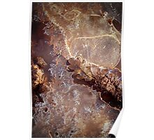 Dried Leaf and Melting Ice Poster