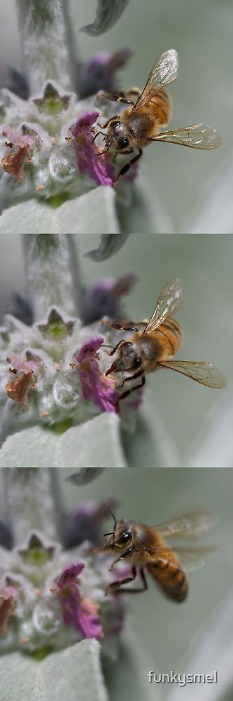 :p (bee) by Michelle Dewis
