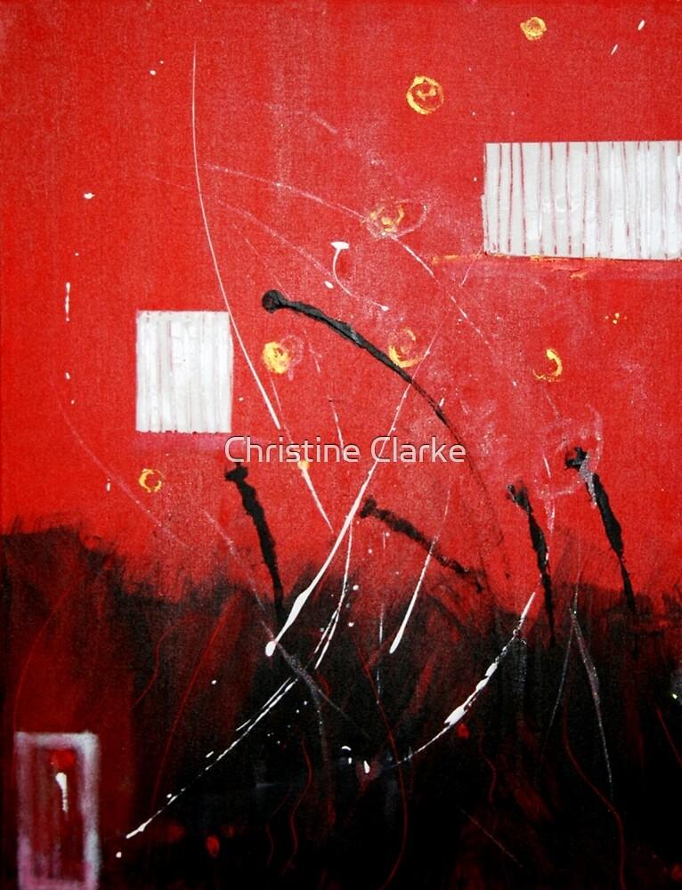 The Poppy Field #2  by Christine Clarke