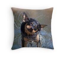 Spin Dry Kelpie Throw Pillow