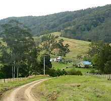 Down On The Farm, Krambach, NSW. by Margaret Stockdale