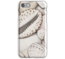 Pebbles, Cowrie & Abalone Shells iPhone Case/Skin
