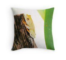 Litoria xanthomera, Orange-thighed Frog Throw Pillow