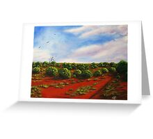 Salt bush and spinifex Greeting Card