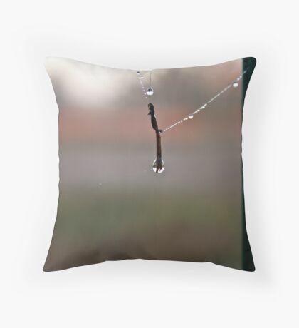 Water Trap Throw Pillow