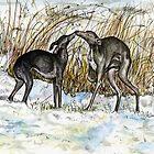 A Winter Story by Elle J Wilson
