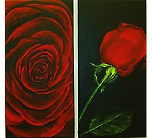Irish Rose in Red Photographic Print