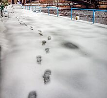 Footprints in the Snow - Tartu by NeilAlderney