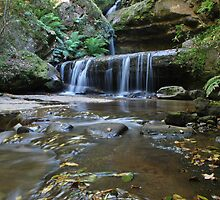 Trinity Falls.Blackheath. 21-11-10 by Warren  Patten