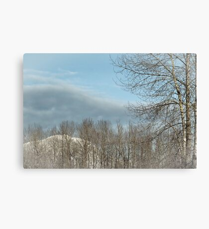Calm after the Storm Canvas Print