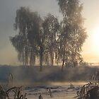 Winter fog by Andrey Kudinov