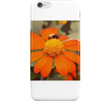 Prescott Park iPhone Case/Skin