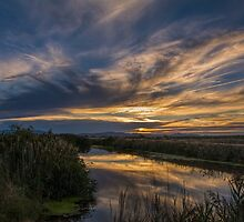 Sunset on the Canal  by Nicole  Markmann Nelson
