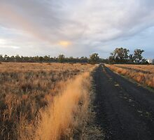 Country NSW 1 by danjames