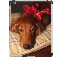 Present dog with red ribbon iPad Case/Skin