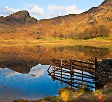 The Fence - Blea Tarn by Trevor Kersley