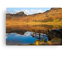 The Fence - Blea Tarn Canvas Print